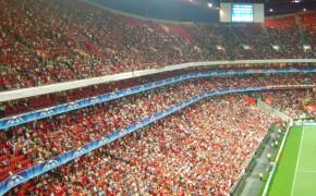 OneMinute - Estádio da Luz