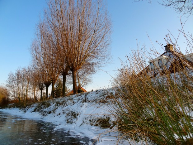 winter in friesland the netherlands 1